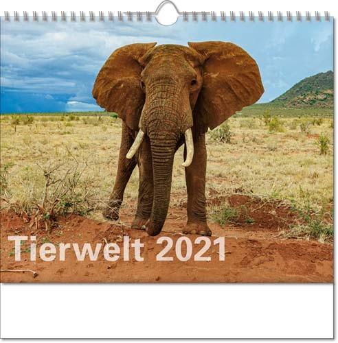 Bildkalender deutsch TIERWELT mit Wire-O